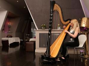 Gloucester harpist 3